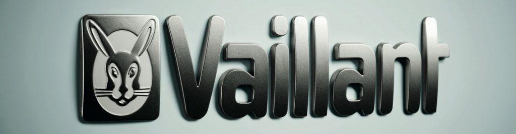 Vaillant_2